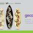 geco3 – Giovani Evoluti COnsapevoli