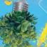 """Casadei: """"Energia e sostenibilità, nuove proposte e buone prassi"""""""